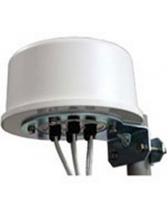 Zebra ML-2452-HPA6X6-036 network antenna Omni-directional N-type 6 dBi Extreme ML-2452-HPA6X6-036 - 1