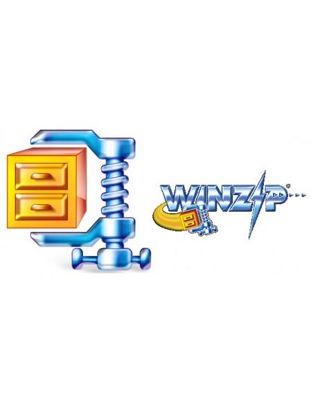 Corel WinZip 15 Standard, 2000-4999U, Upgrade, EN Corel LCWZ15STDENUGI - 1