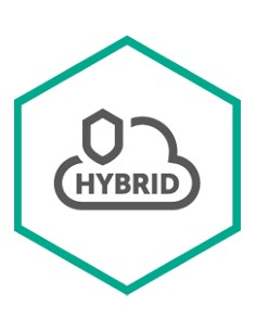 Kaspersky Lab Hybrid Cloud Security Uusiminen Kaspersky KL4253XAATQ - 1