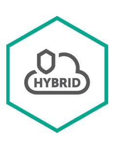 Kaspersky Lab Hybrid Cloud Security for Server Uusiminen Kaspersky KL4255XATFR - 1