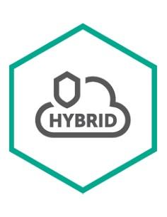 Kaspersky Lab Hybrid Cloud Security Lisenssi Kaspersky KL4155XAKMG - 1