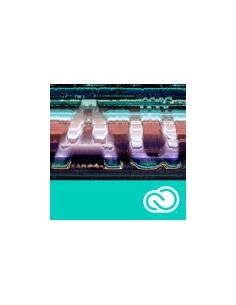 Adobe Vip-g Audition Cc Rnw L2 12m (en) Adobe 65227531BC02A12 - 1