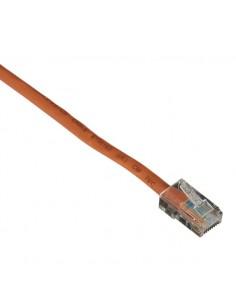 Black Box Cat5e, 4.5m verkkokaapeli 4.5 m U/UTP (UTP) Oranssi Black Box EVNSL14E-0015 - 1