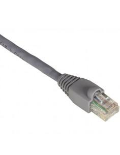 Black Box CAT5e UTP 0.3m verkkokaapeli 0.3 m U/UTP (UTP) Harmaa Black Box EVCRB80-0001 - 1