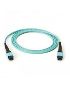 Black Box Blackbox Om3 Fiber Optic Trunk Cable, Mtp® Mpo-style, Black Box FOTC20M3-MP-12AQ-50 - 1