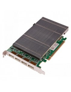 Black Box Blackbox Radian Video Graphics Card - 4-port Displayport Black Box VGC-DP-4-H - 1