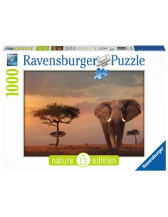 ravensburger-00-015-159-tile-puzzle-1000-pc-s-1.jpg
