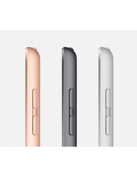 apple-ipad-4g-lte-32-gb-25-9-cm-10-2-wi-fi-5-802-11ac-ipados-harmaa-3.jpg