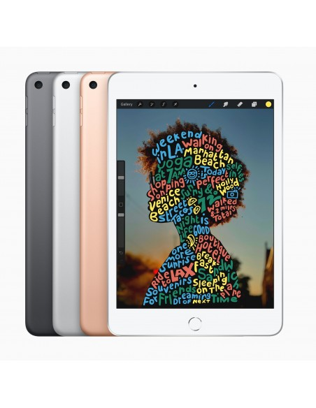 apple-ipad-mini-256-gb-20-1-cm-7-9-wi-fi-5-802-11ac-ios-12-guld-3.jpg