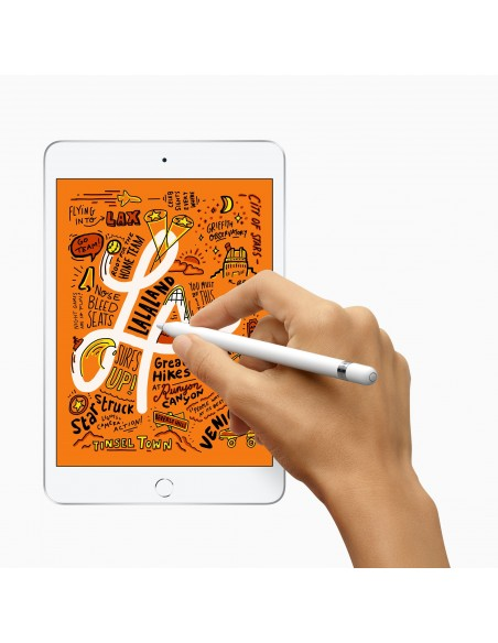 apple-ipad-mini1-4g-lte-256-gb-20-1-cm-7-9-wi-fi-5-802-11ac-ios-12-hopea-3.jpg